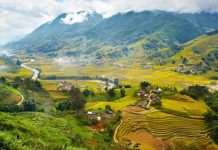 Phân tích bài thơ Việt Bắc của tác giả Tố Hữu