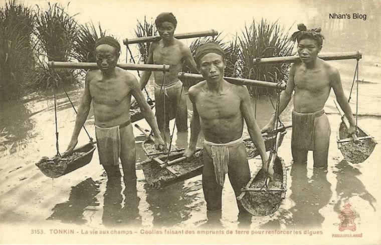 nong dan thoi xua - MS305 - Cảm nhận về số phận người nông dân trong 2 giai đoạn từ 1930-1945 và giai đoạn 1945-1975