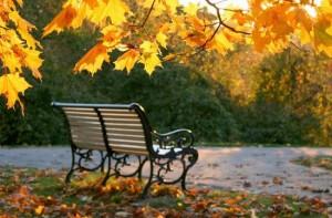 """MS374 - Phân tích hình ảnh thiên nhiên trong thơ Xuân Diệu qua các bài """"Đây mùa thu tới"""", """"Vội vàng"""", """"Thơ duyên"""", """"Nguyệt cầm"""""""