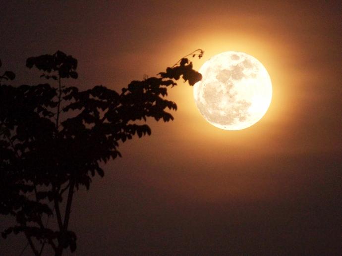 top 10 bai tho hay ve trang 7 - Top 10 Bài thơ hay về trăng